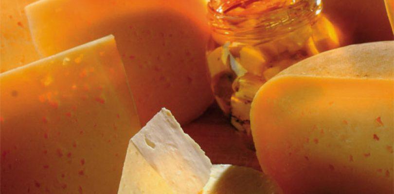 L'atlante mondiale dei formaggi, non plus ultra!