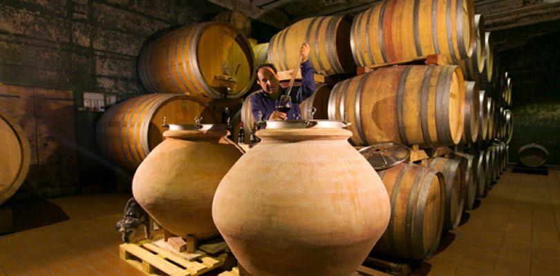 Cantina Antonelli San Marco, il vino nell'anfora